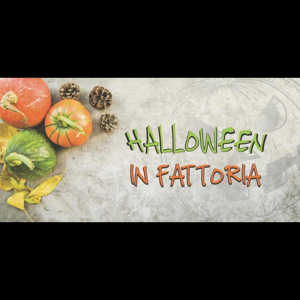 Halloween-fattoria