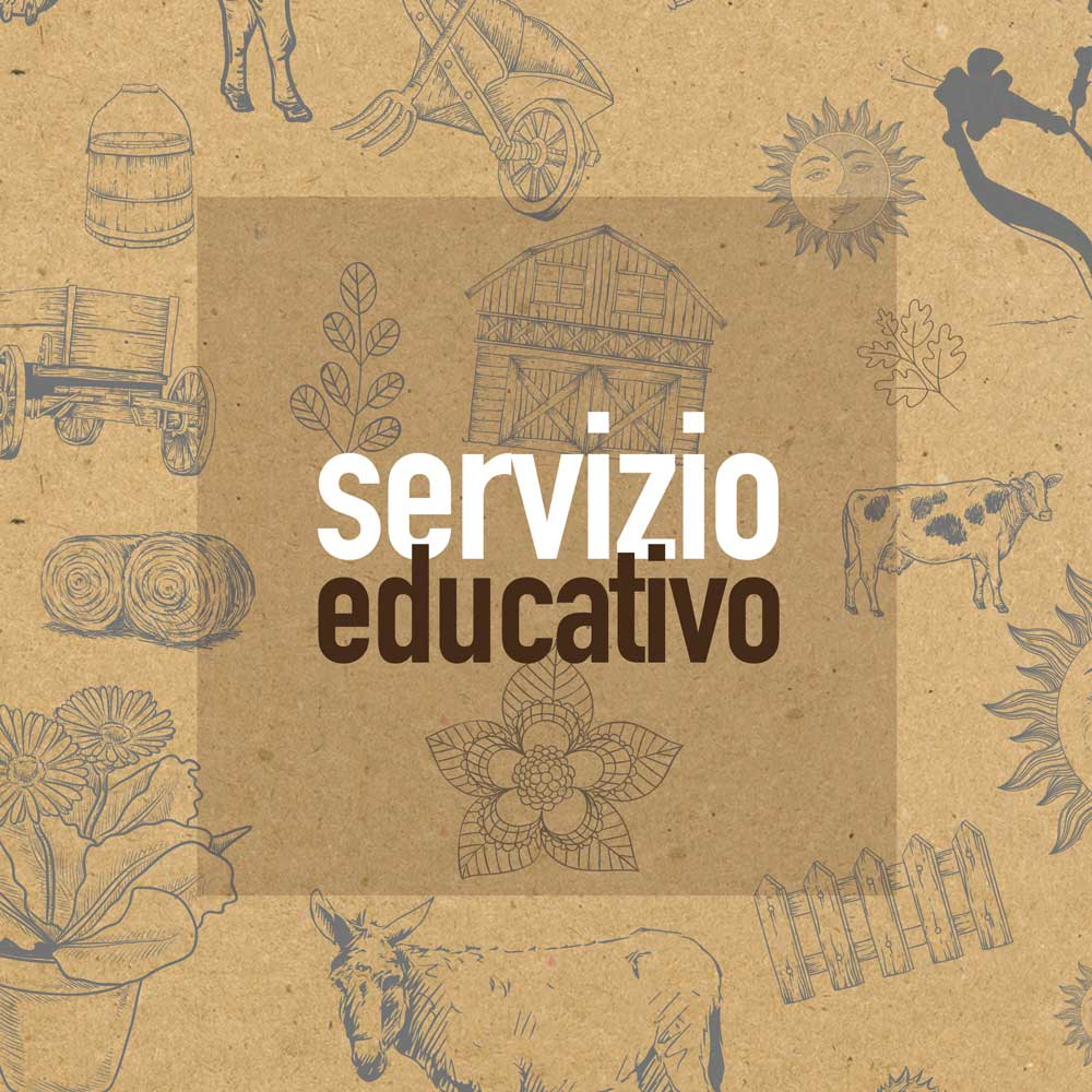 servizio-educativo fattoria