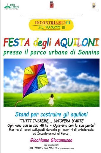 Festa degli aquiloni 2019